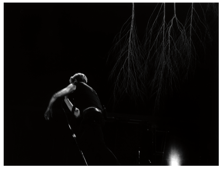 Figure 12 One of the images of Bowie from the back from the Stage collection that Slimane republished on the occasion of Bowie's death